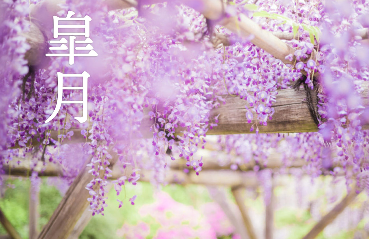 今月のRemind 5月編