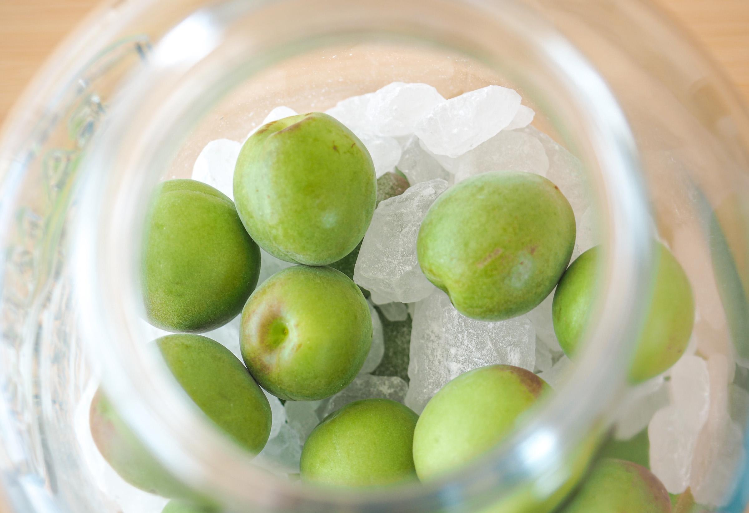 梅酒の作り方 1.保存容器に、下ごしらえした青梅と氷砂糖を交互に入れていきます。