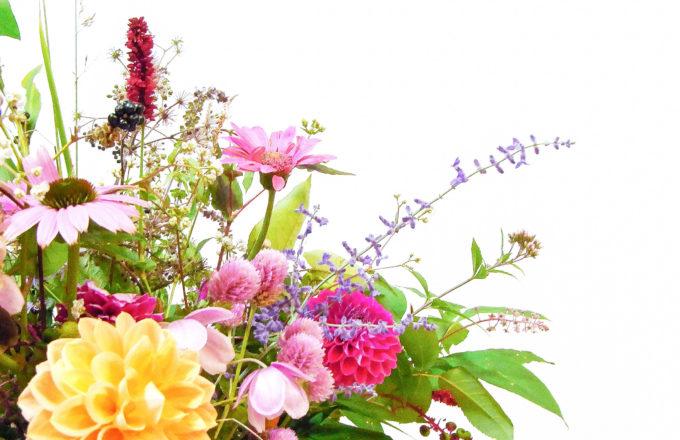 [今月のRemind 9月編] なぜ敬老の日は9月なの?敬老の日にまつわるアレコレ